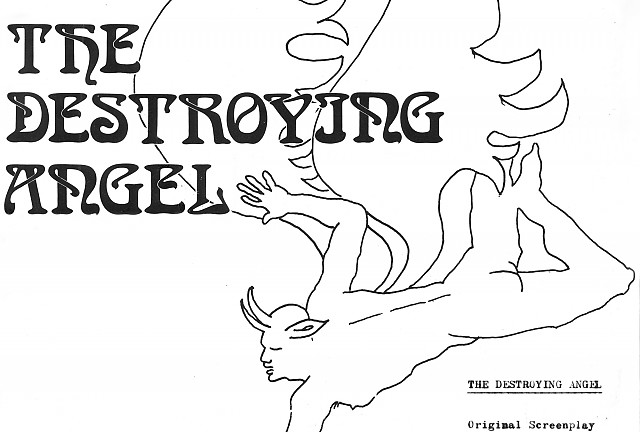 Destroying Angel Gallery